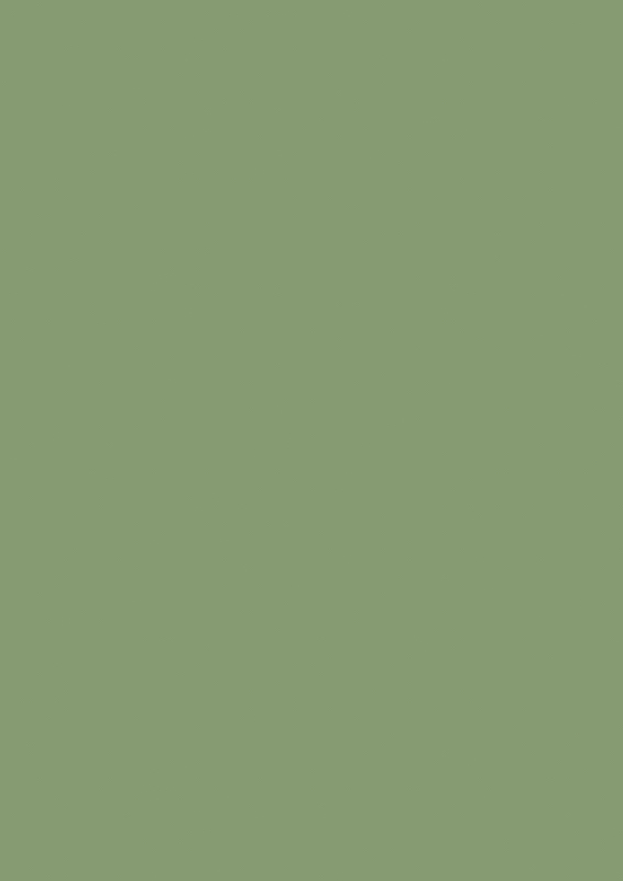 Farrow & Ball Farbe  Yeabridge Green No. 287