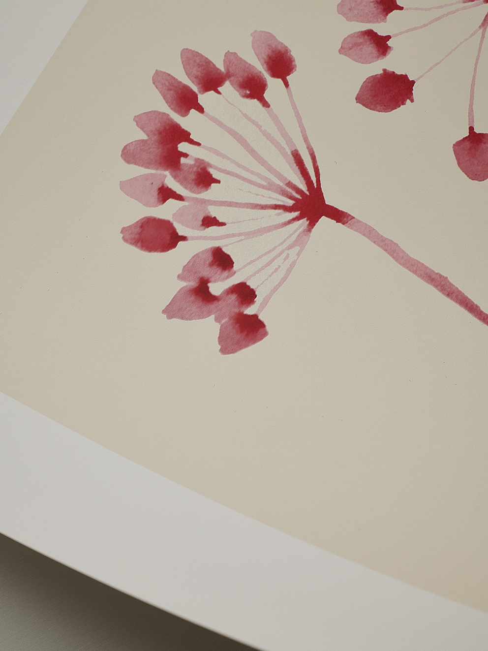 The Poster Club Poster Ana Frois Flowers 02