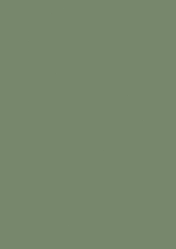 Farrow & Ball Farbe Calke Green No.34