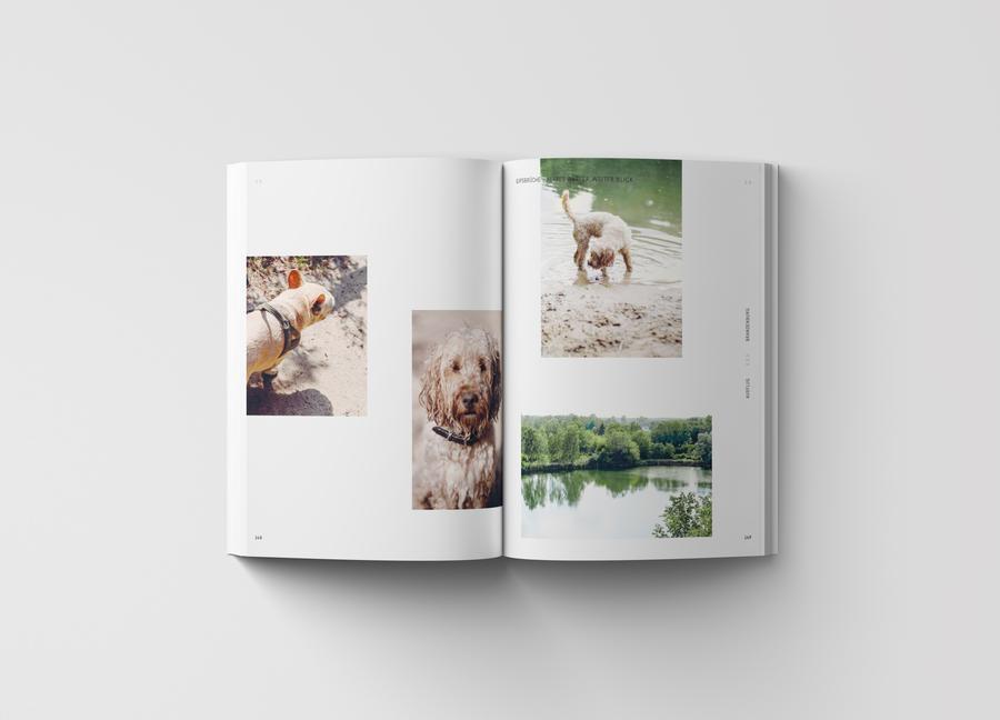 The Gentle Temper   Walking Wild - Berlin mit Hund
